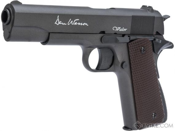 Photo of Dan & Wesson Valor