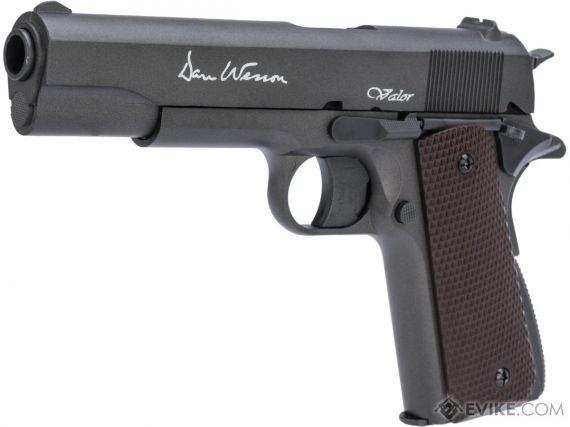 Photo of Dan & Wesson Valor